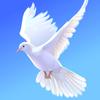 День согласия и примирения