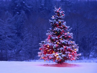 Родовое дерево поздравляет с Новым годом!