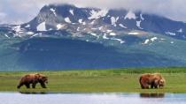 Как обладание Аляской могло бы повлиять на современное состояние России